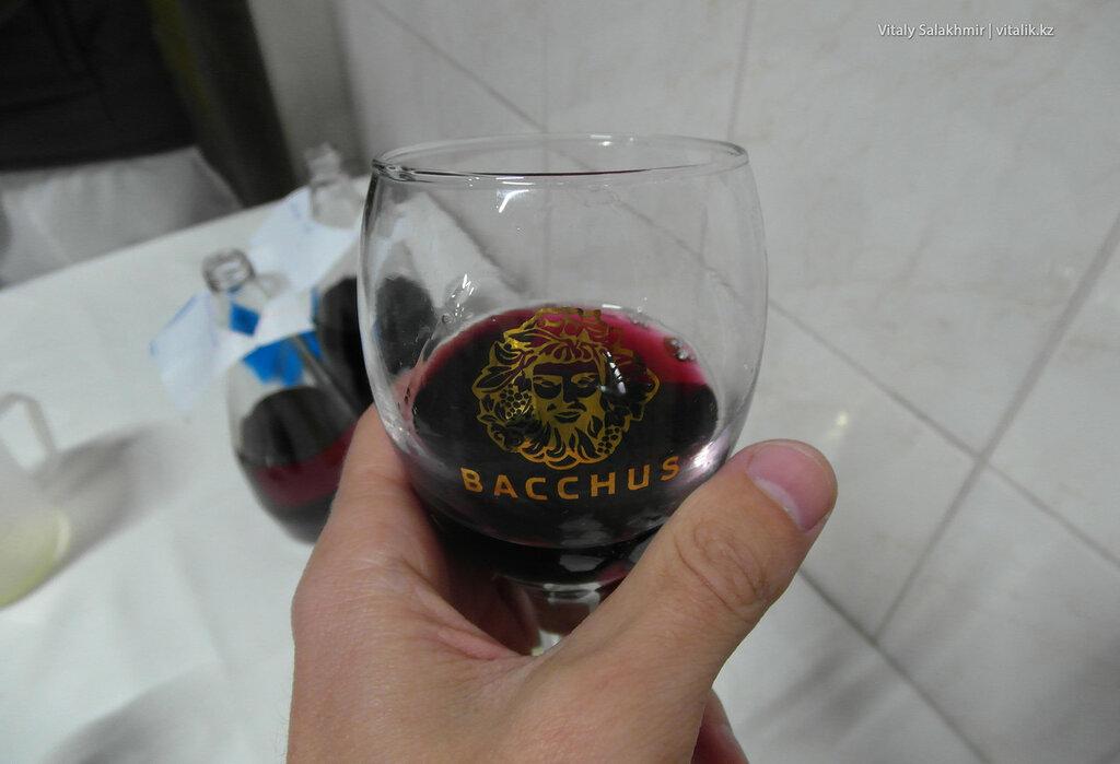 Красное вино Жар-жар, дегустация на заводе Бахус