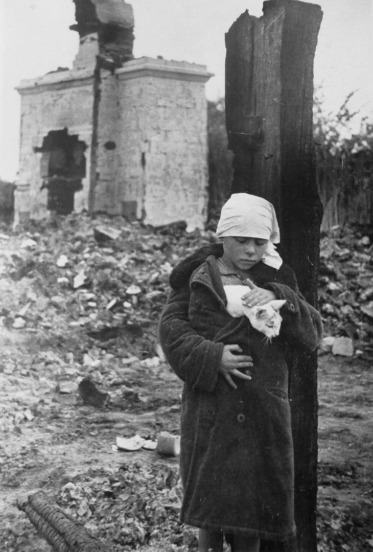 Девочка с кошкой возле разрушенного дома. Смоленская область, 1 октября 1941 года.
