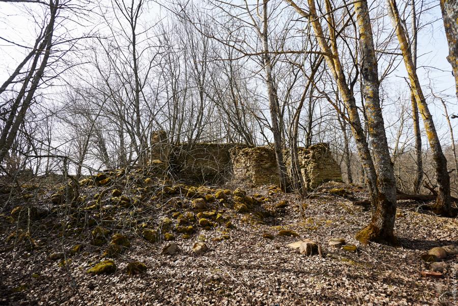 alexbelykh.ru, деревня Высоцкое, полумызок Высоцкое, мыза Высоцкое, памятник деревне Высоцкое, утраченная деревня, разрушенная деревня