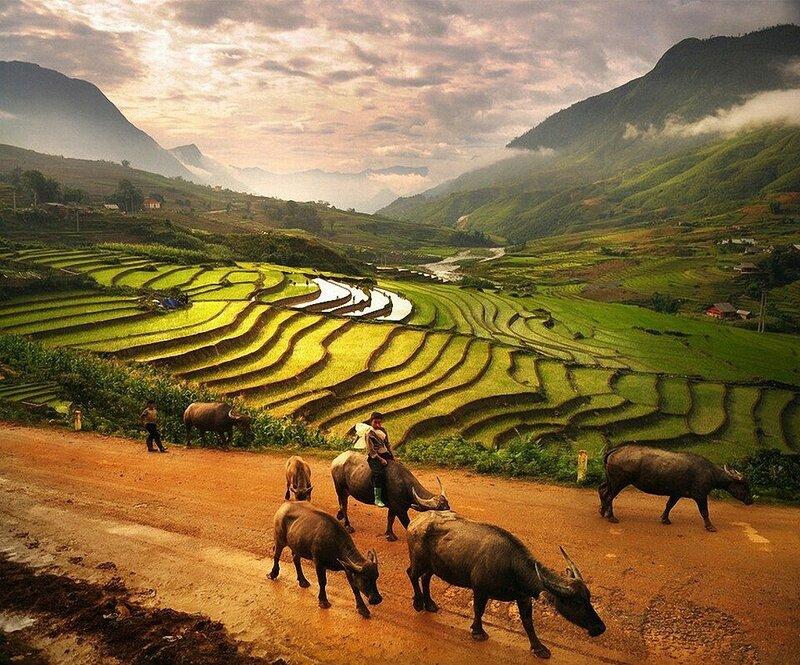 Деревня Тапан в регионе Сапа во Вьетнаме