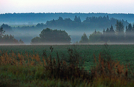 Аренда земли рядом с«дачей Медведева» обходится в40 руб. вгод