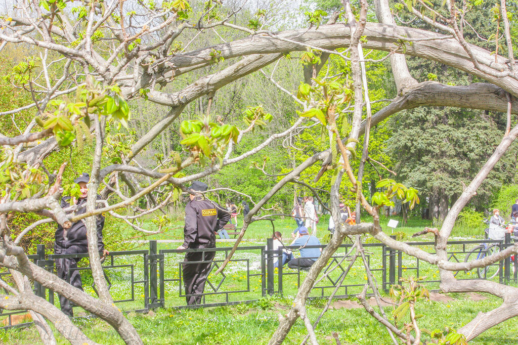 Главный ботанический сад-47.jpg