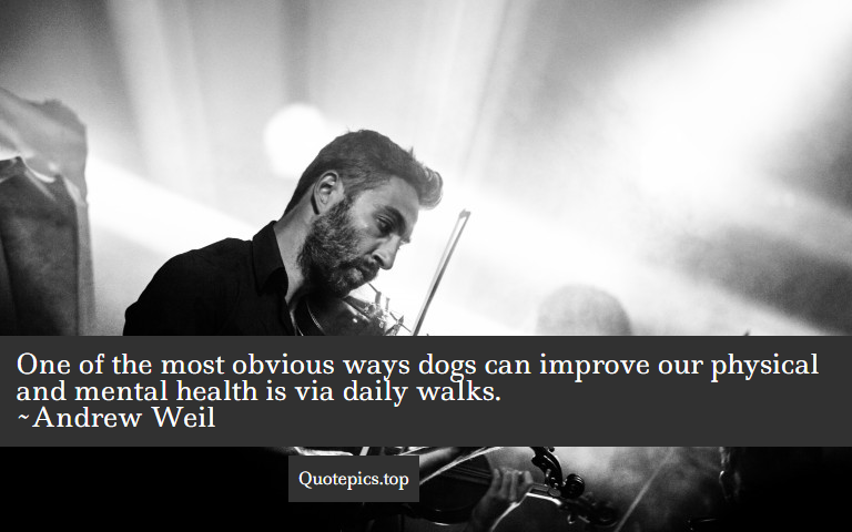 One of the most obvious ways dogs can improve our physical and mental health is via daily walks. ~Andrew Weil