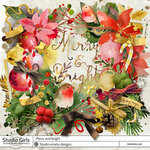 Merry and bright by Emeto designs.jpg