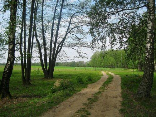 По весенней дороге