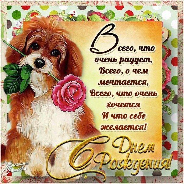 Поздравления для собаки с днем
