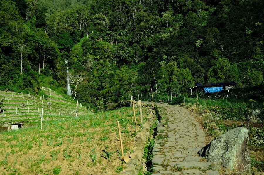 Водопад Озеро Саранган (danau sarangan) рядом с вулканом Лаву на Восточной Яве Озеро Саранган (Danau Sarangan) рядом с вулканом Лаву на Восточной Яве 0 1b11d9 a54c9494 XXL