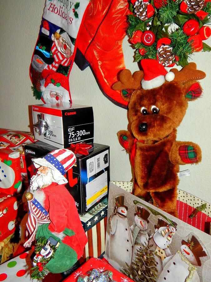 Christmas-2013 Titan &Elvis