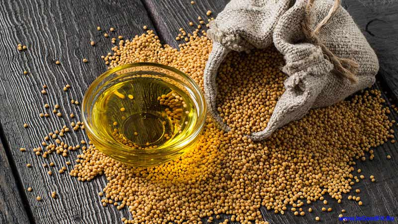 лучшее растительное масло