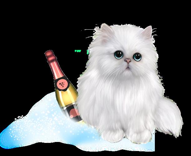 Шампанское (7).png
