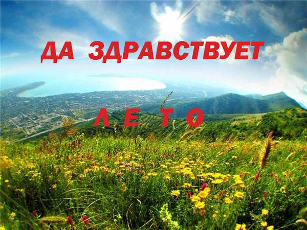 Да здравствует лето! Поле цветов открытки фото рисунки картинки поздравления