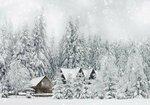 Lonely house/Домик в лесу