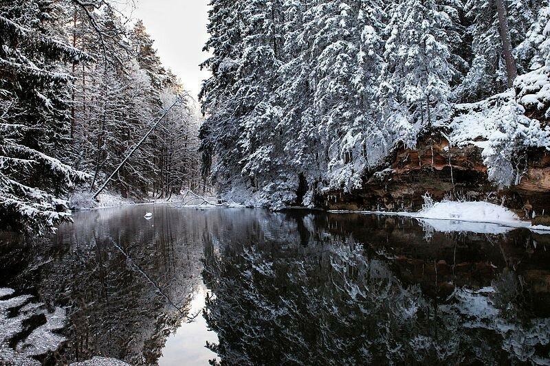 Победители конкурса Вики любит Землю   15 лучших фотографий года