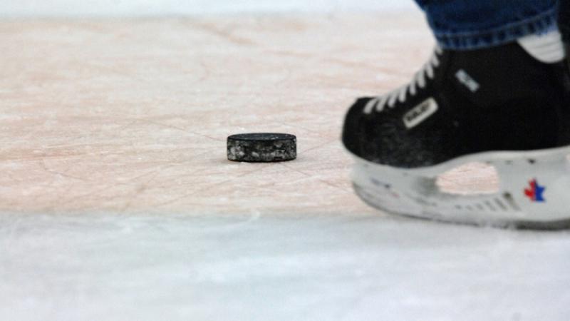 Болельщица женила насебе молодого человека впроцессе хоккейного матча
