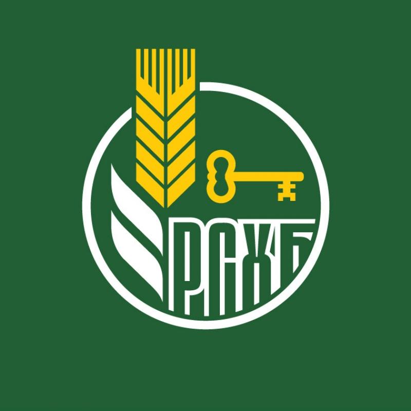 Улучшить баланс: мэрия Воронежа возьмет вдолг 2 млрд руб.