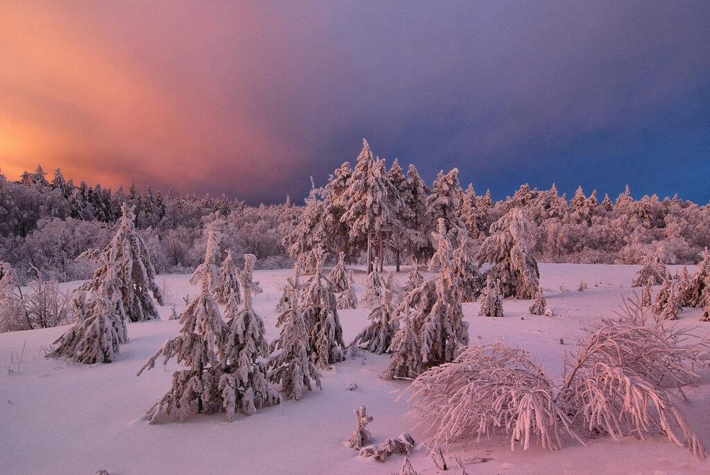 99px_ru_photo_134015_utrennie_luchi_voshodjashego_zimnego_solnca_na_nebe_pokritom.jpg