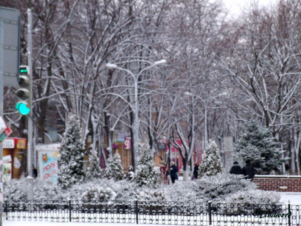 Вот-и-снег-07.jpg