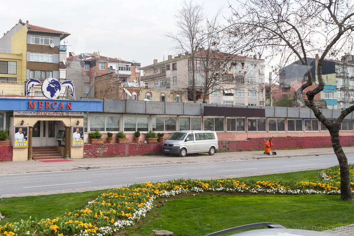 Тюльпаны Стамбул фото 8