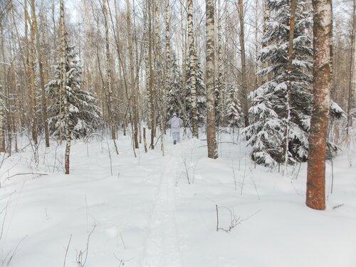 Зимовка-2017