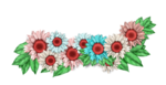LH_Curious_Flower_012.png