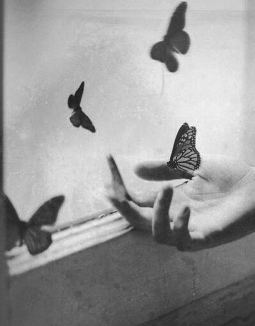 1930-е. Бабочки у окна