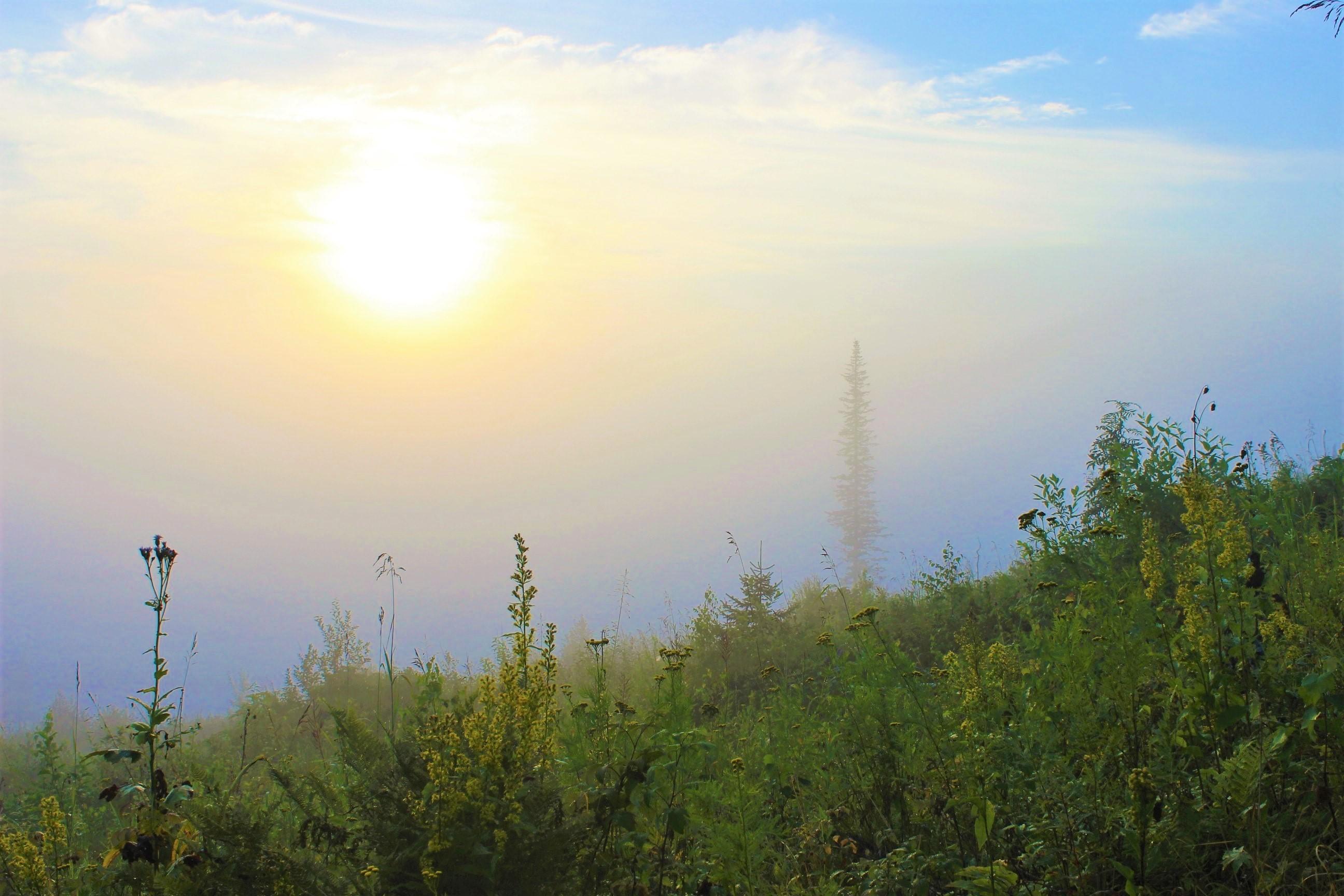 IMG_7252.JPG Солнце ещё в дымке тумана
