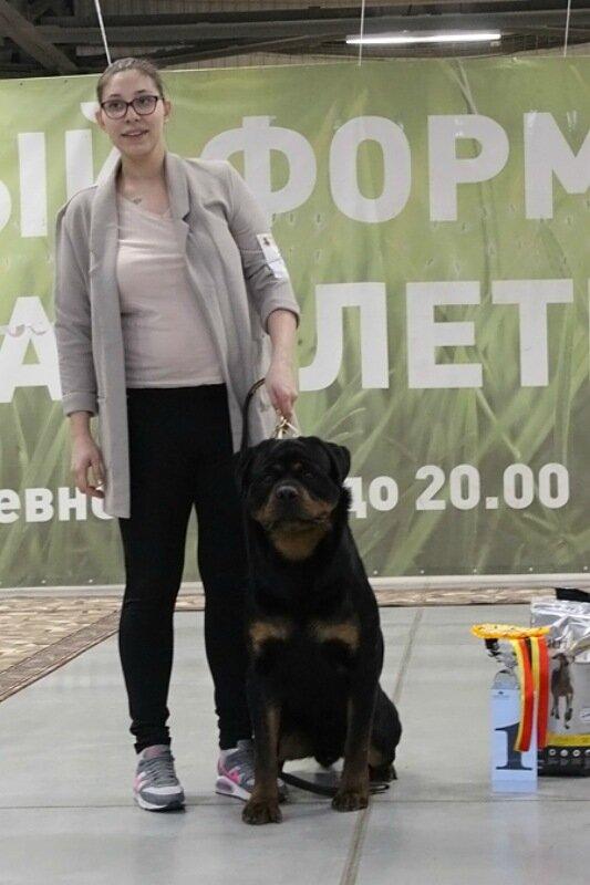 https://img-fotki.yandex.ru/get/987895/225487091.c5/0_17c54d_a71d404d_XL.jpg