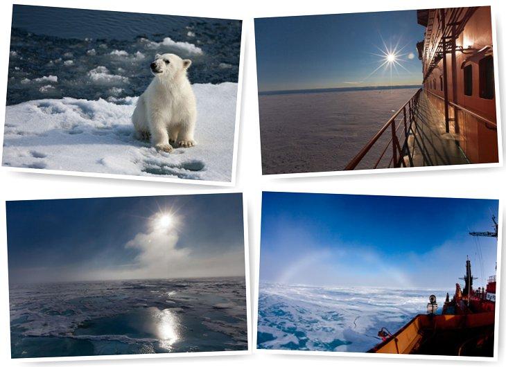 Путешествие на Северный полюс. Часть 2 (49 фото)