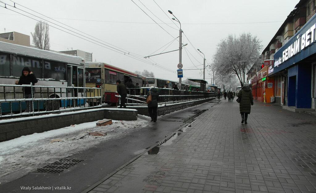 Автобусы на Саяхате