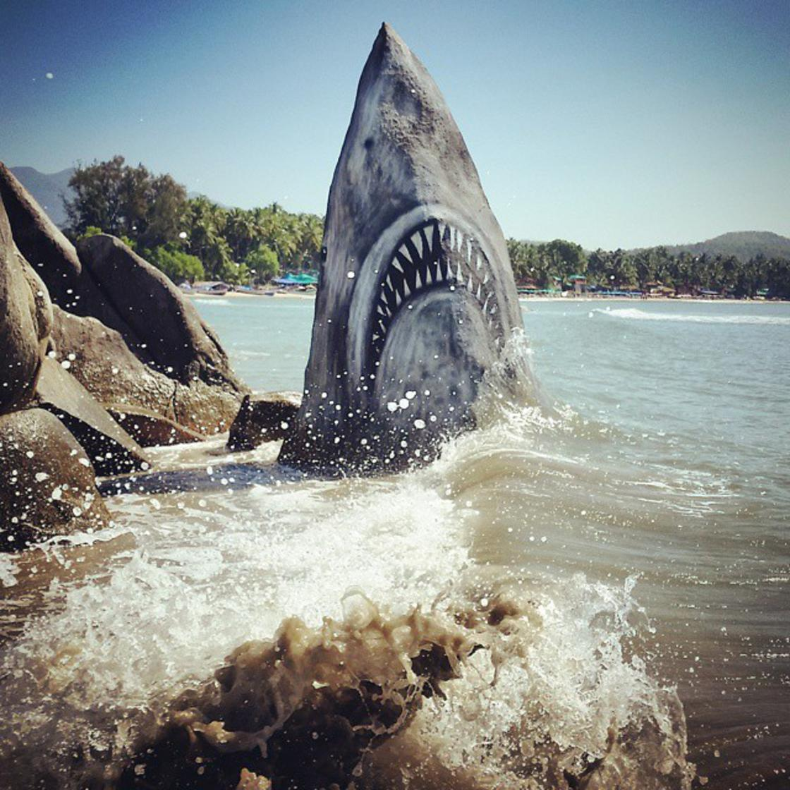 Jaws – This artist turns a simple rock into a fierce shark