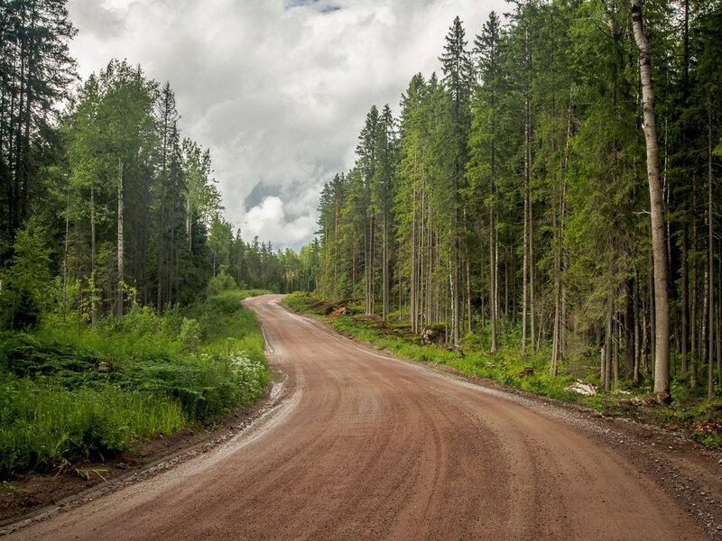Дорога всё более дикая и интересная.