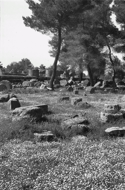 Олимпия. Руины храма Зевса