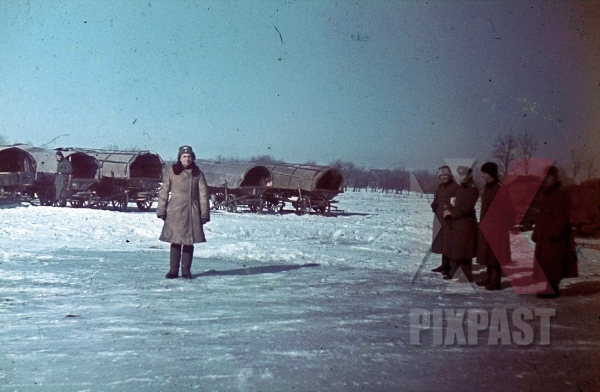 stock-photo-german-color-photo-wehrmacht-army-cavalry-supply-column-with-horses-wagons-snow-winter-ukraine-1942-winter-hat-7965.jpg