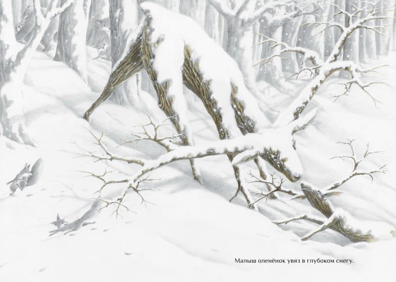 The Snow Deer_3.jpg