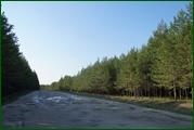 http://img-fotki.yandex.ru/get/98813/15842935.39b/0_ec1a5_30535500_orig.jpg