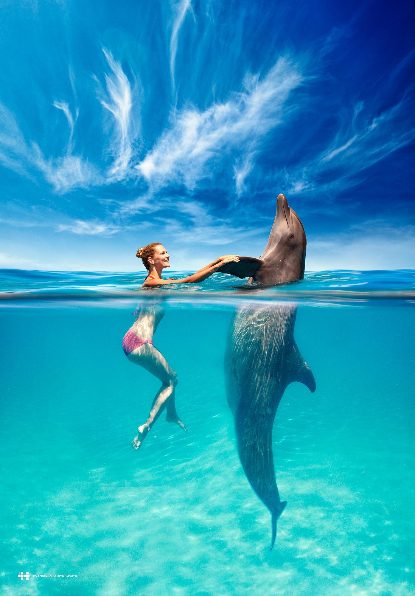 Magic Moments / Felix Hernandez Dreamphography