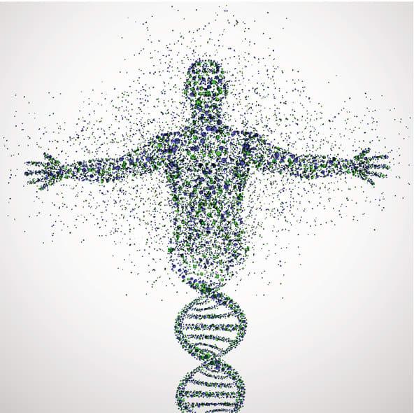 Сегодня ваше тело почти полностью состоит из совершенно других атомов, чем год тому назад Требуется