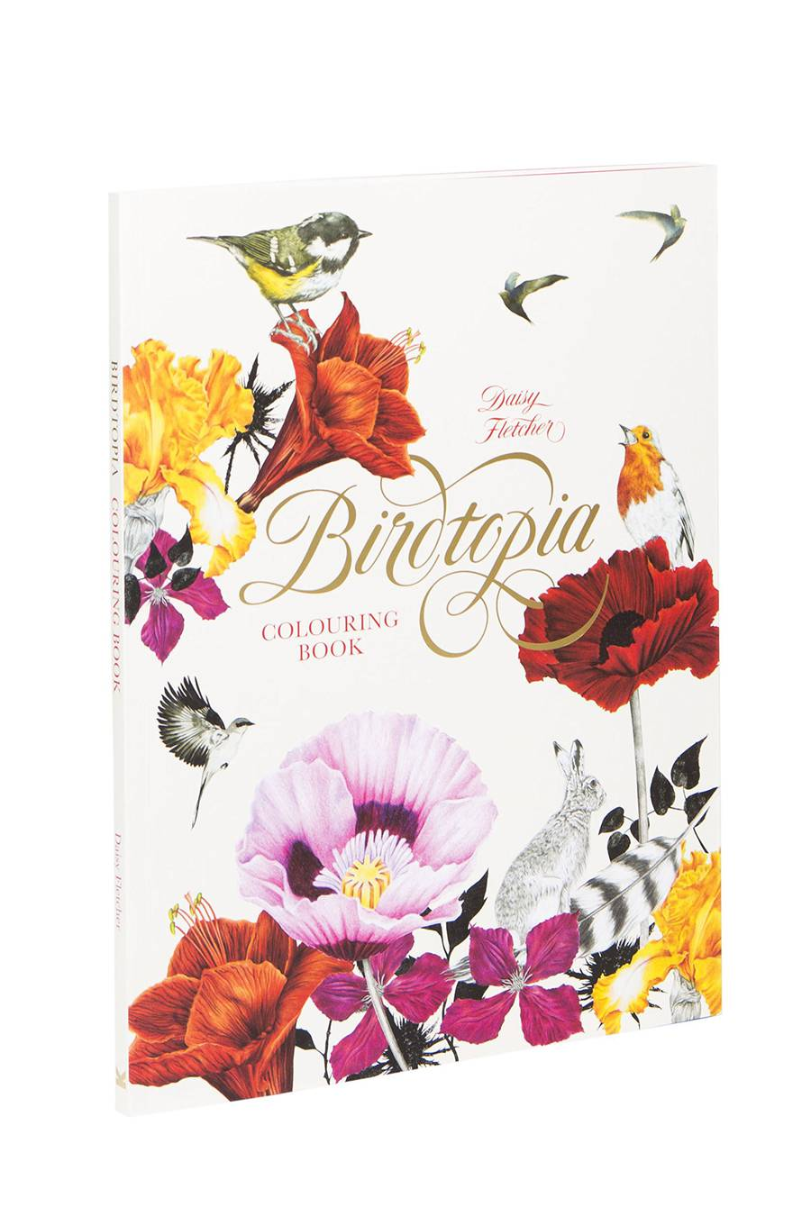 Whimsical Birds and Flowers Coloring Book