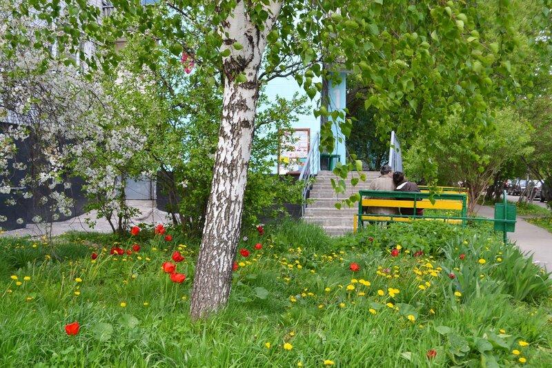 Весна на Озерной улице.jpg