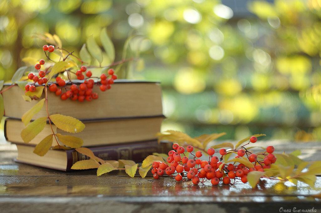Осеннее время - как солнце сквозь пелену