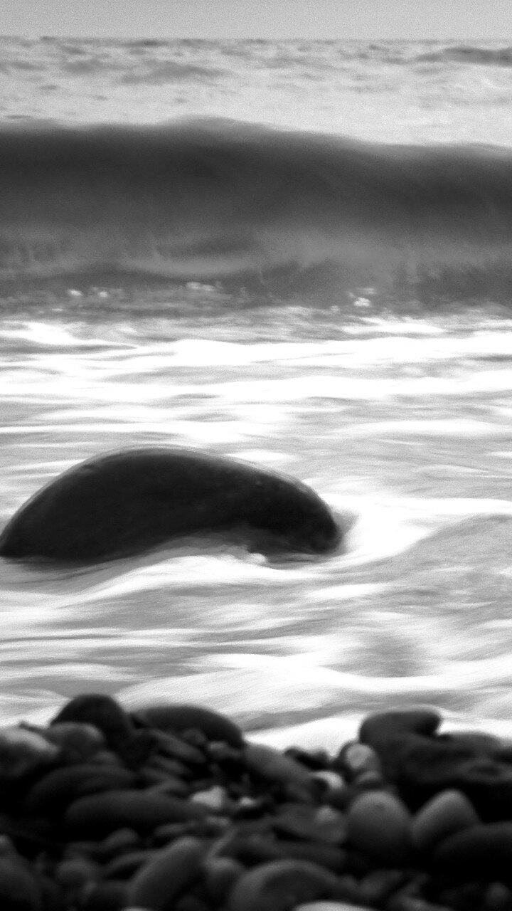 Набежавшая волна ... SAM_0170.jpg