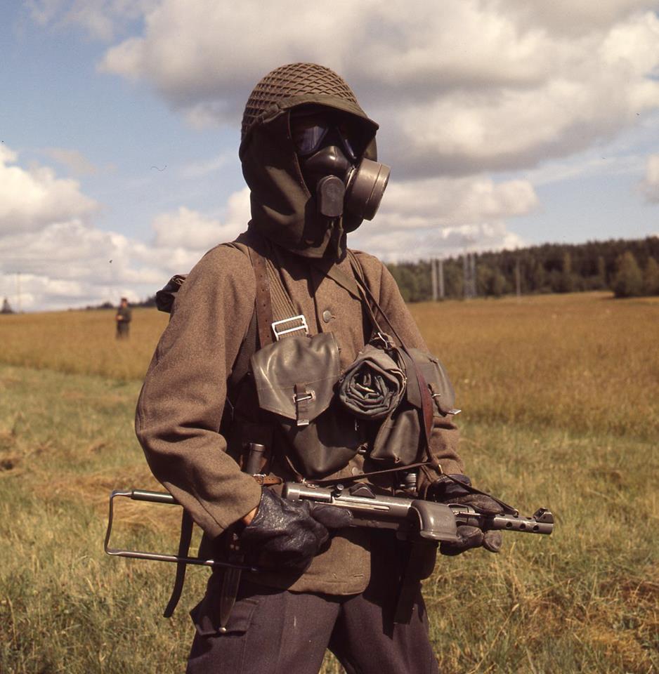 Шведская армия времен холодной войны. ( 100 фото )