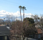 С крыши дома моего - 3