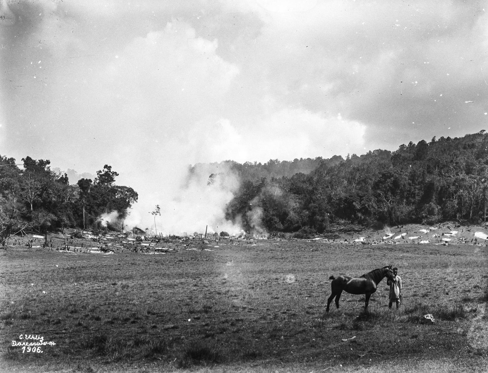 70. Выжигание земли под пашню