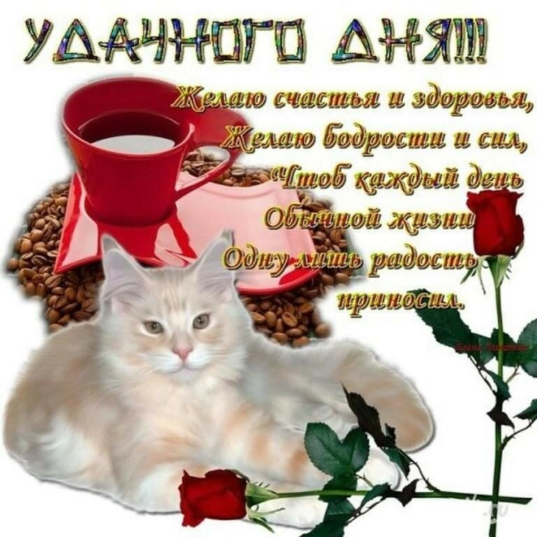 открытки стихи добрый день красивые картинки приколы