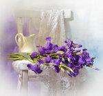 Фиолетовые ирисы или До свидания, родной ЯФ...