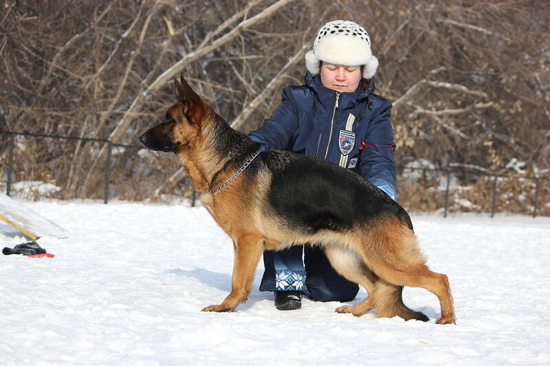 http://img-fotki.yandex.ru/get/9895/134559744.19/0_bb334_9ca0cb16_XL.jpg