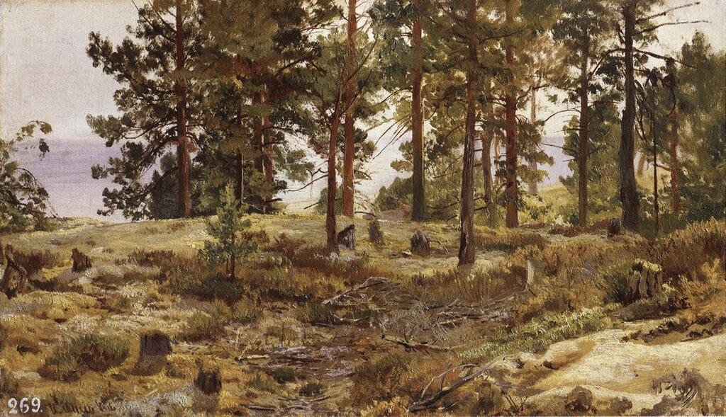 На песчаном грунте. Мери-Хови по Финской железной дороге. 1889 35,5х50.jpg