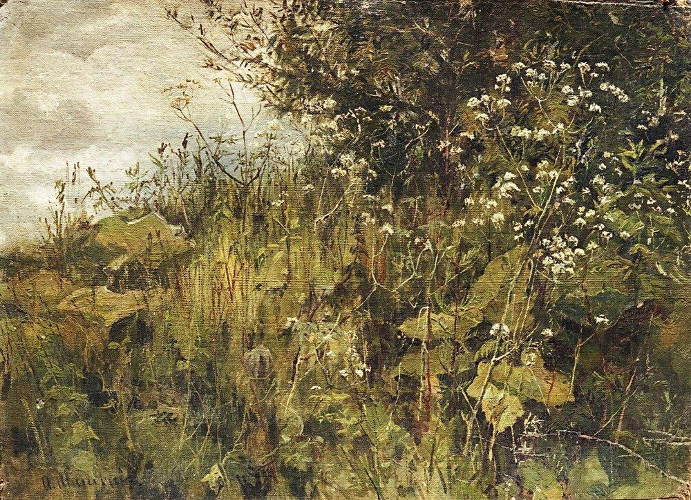 Сныть-трава.Этюд.jpg