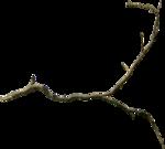 Holliewood_SpringFaeries_Branch7.png